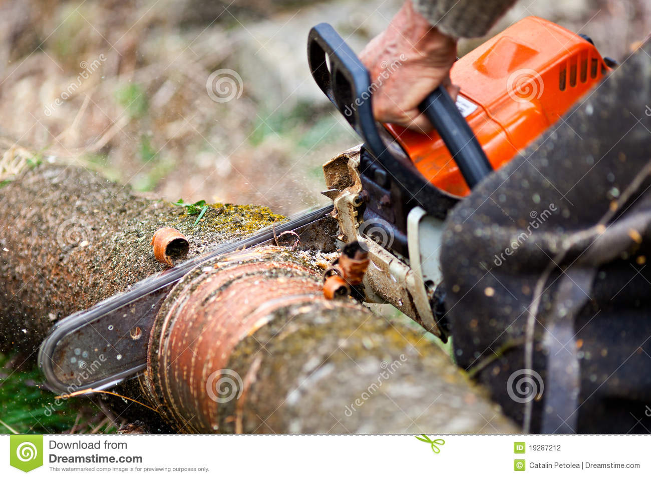 how to cut a tree trunk with a chainsaw