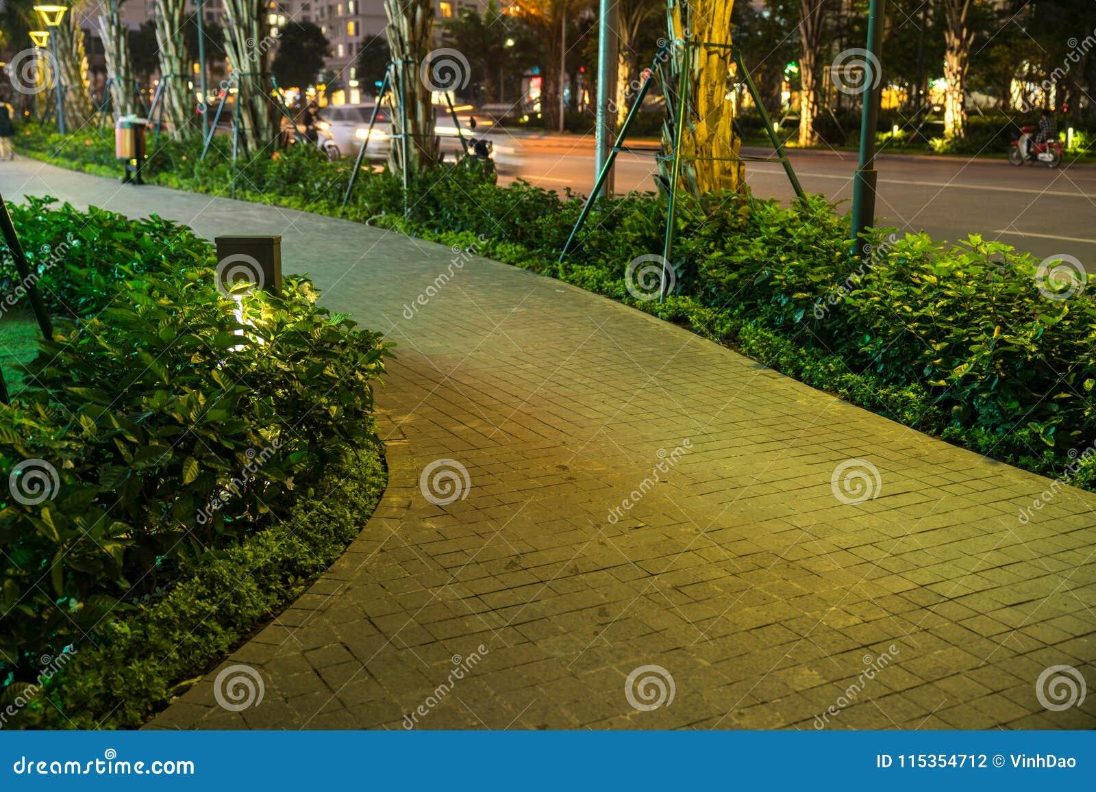 Lumière Rougeoyante De Décoration De Jardin En Parc La Nuit Avec Le ...