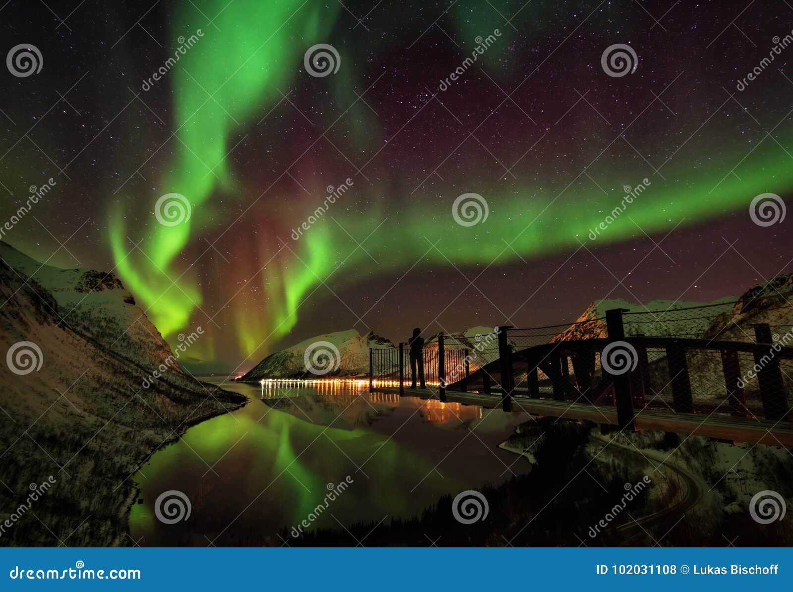 Lumières du nord Aurora Borealis Norway d îles de Lofoten