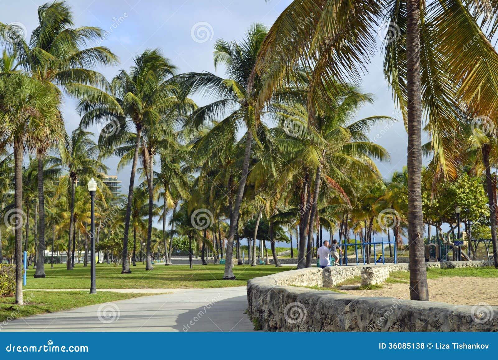 Lummus Park South Beach Miami Royalty Free Stock Photos Image 36085138