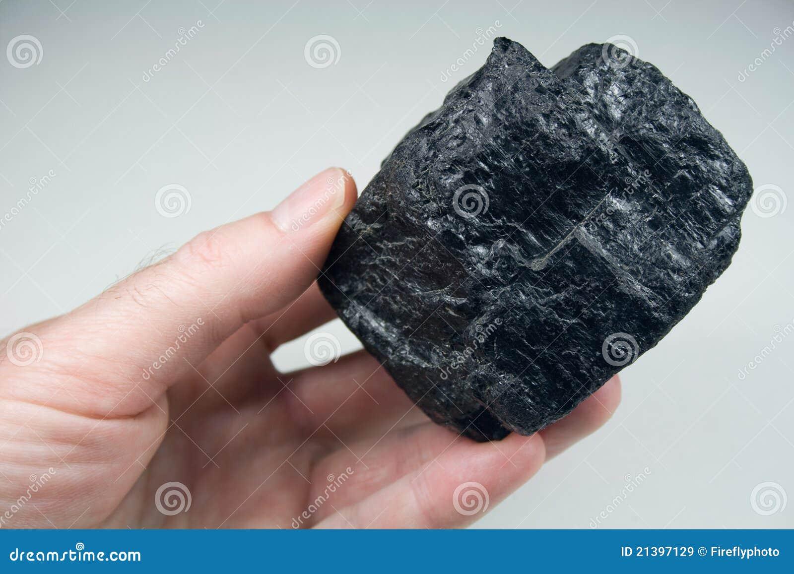 Lump of Raw Coal in Hand