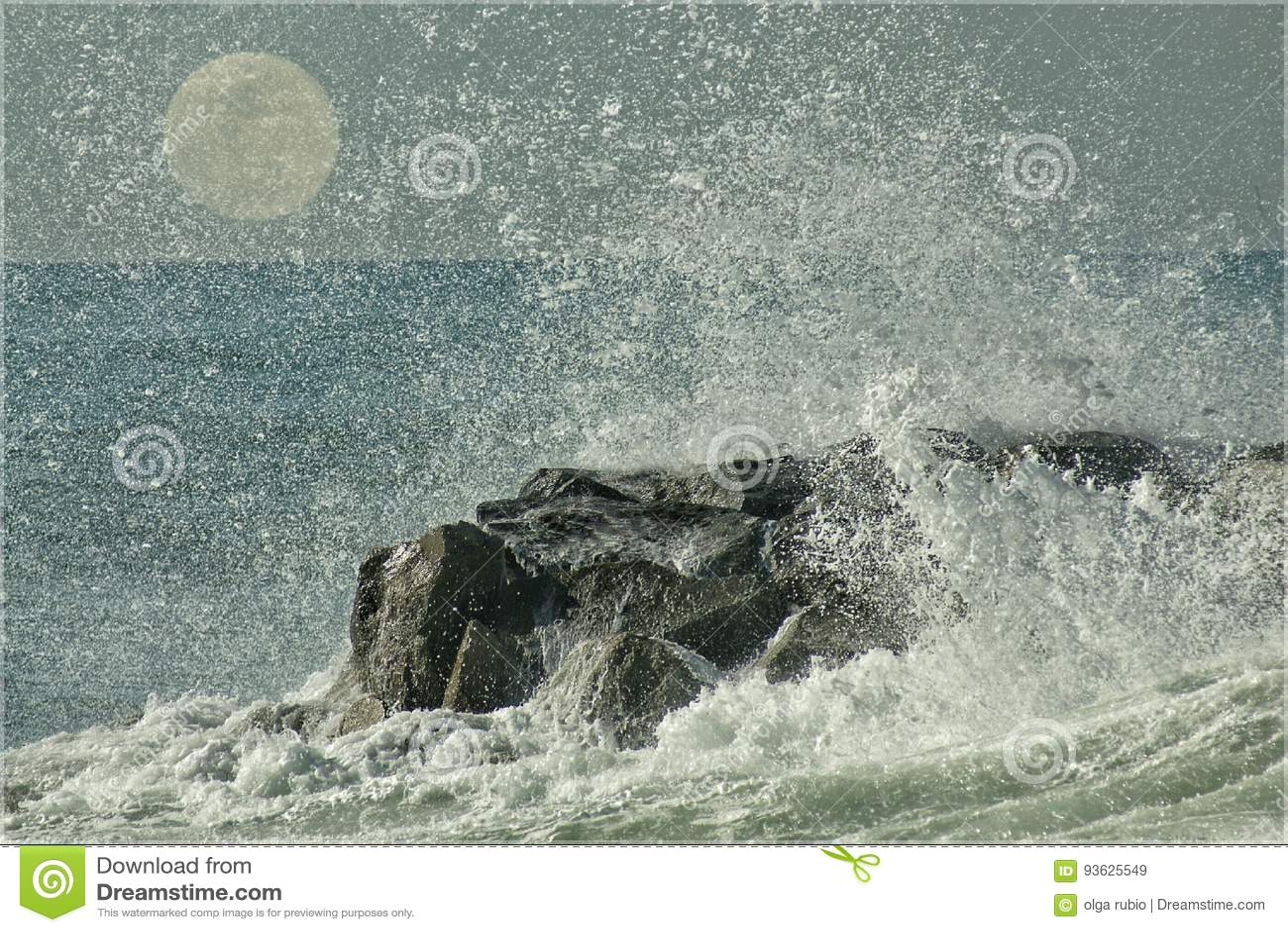 Luna marina