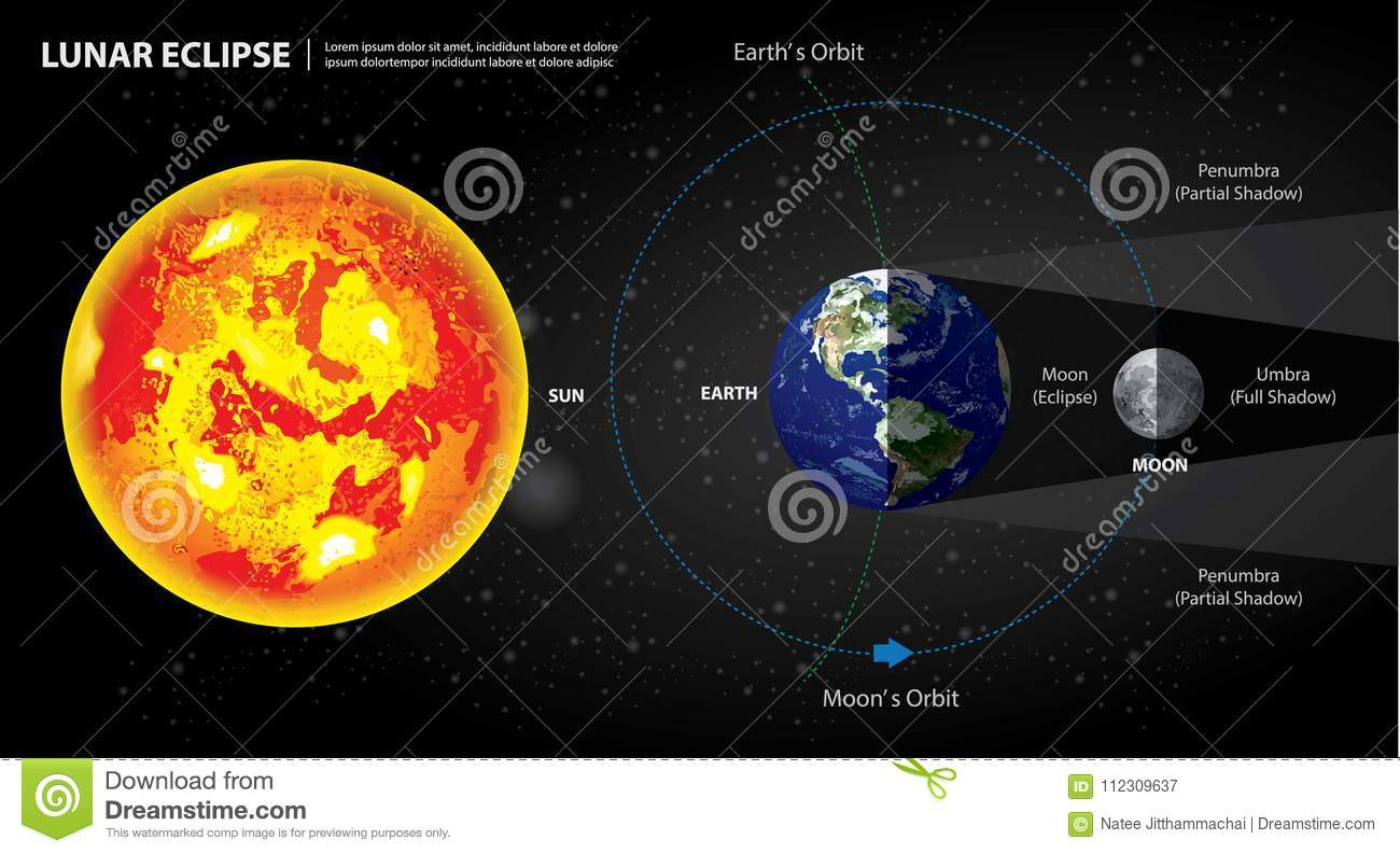 Lunar eclipses sun earth and moon stock vector illustration of lunar eclipses sun earth and moon vector illustration ccuart Image collections