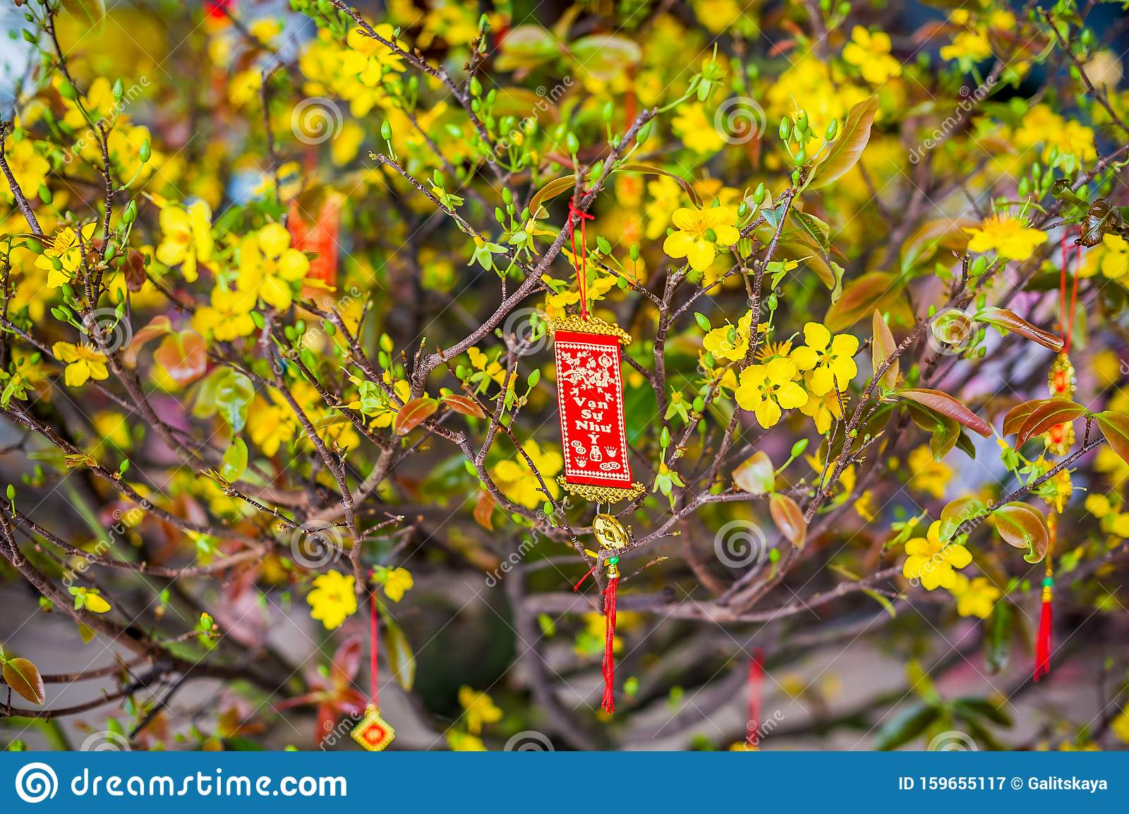 Lunar New Year Lucky Decoration Objects. Words Mean Best ...