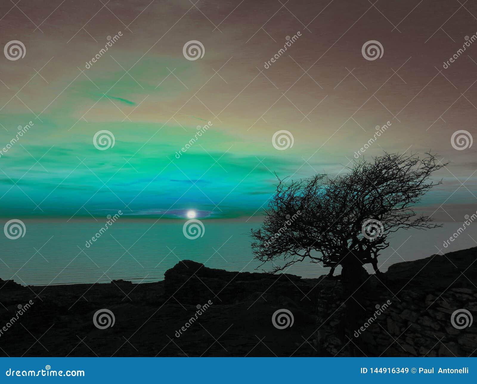 Lune artistique derrière l arbre