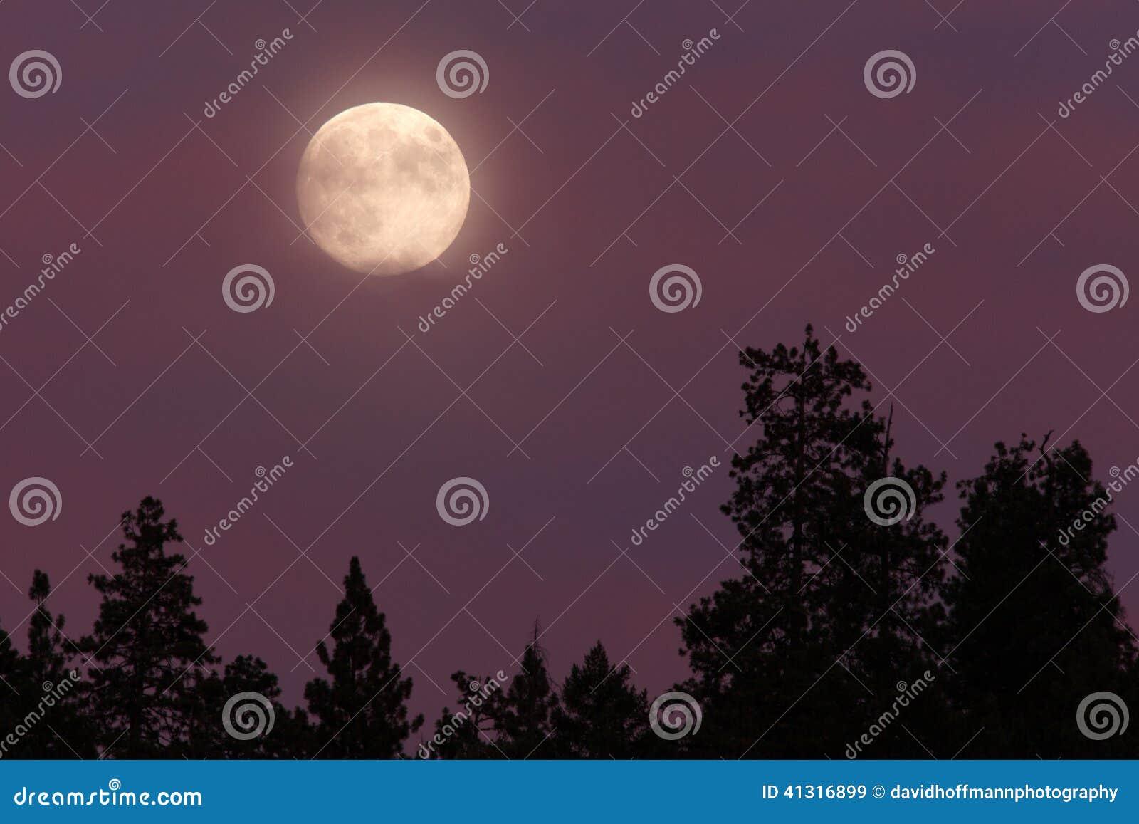 Lune bleue Pleine lune 08/19/13, ressortissant de l Orégon, Siskiyou de cascade