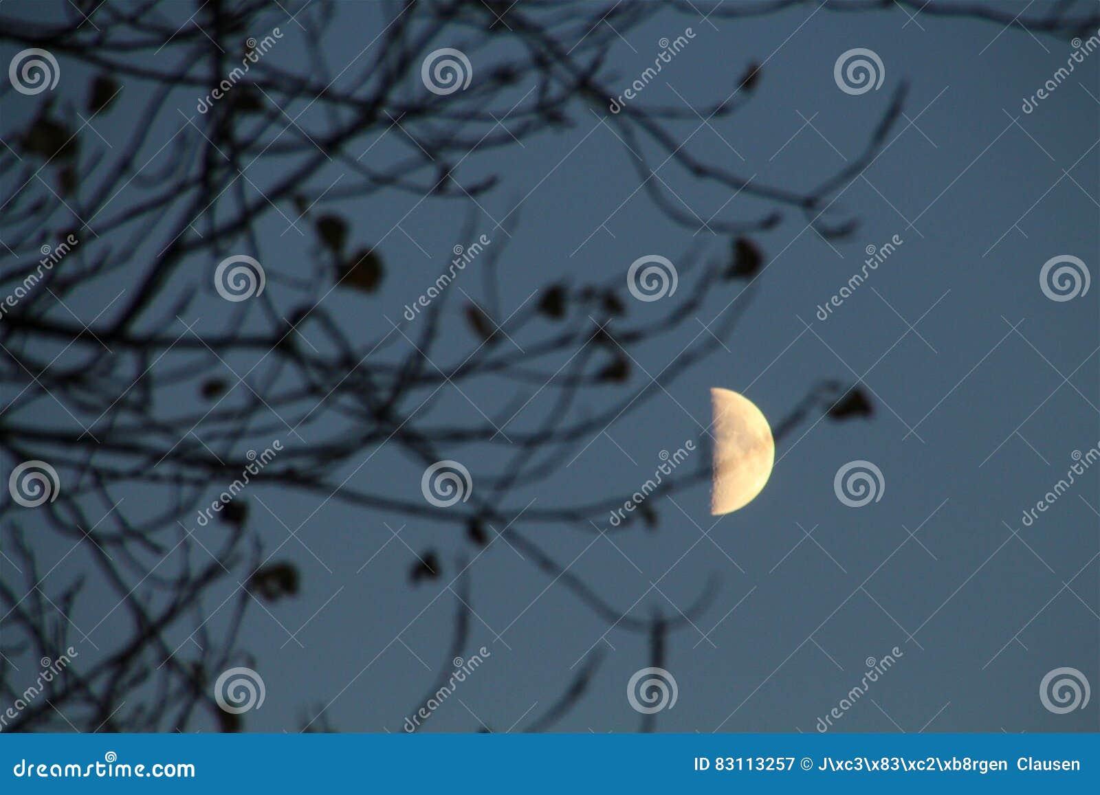 Lune presque pleine en novembre