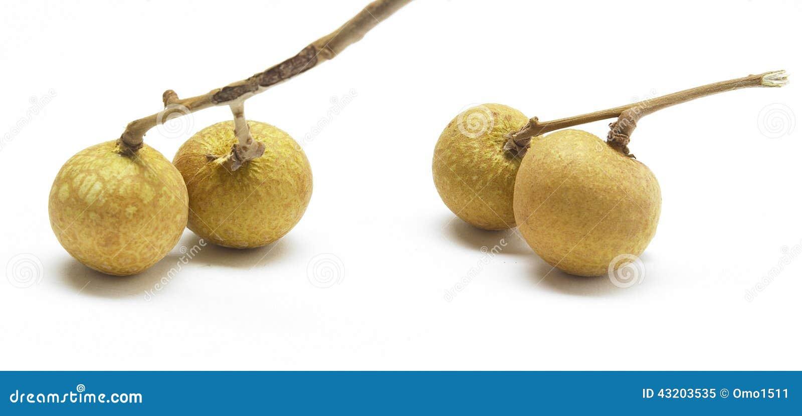 Download Lungan Frukt Som Isoleras På Vit Bakgrund Fotografering för Bildbyråer - Bild av thai, objekt: 43203535