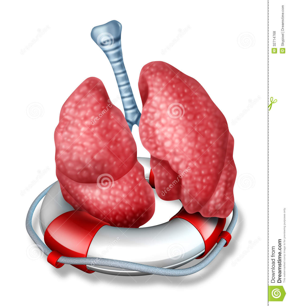Respiratory Therapist Clipart The respiratory system of
