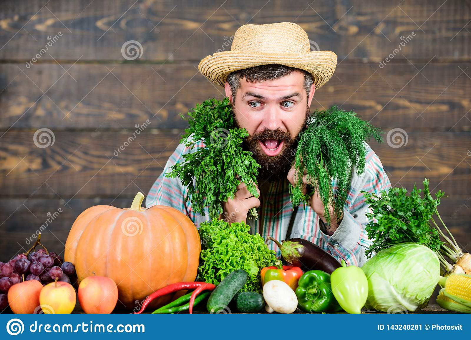 Lush healthy beard. bearded mature farmer. harvest festival. man chef with rich autumn crop. organic and natural food