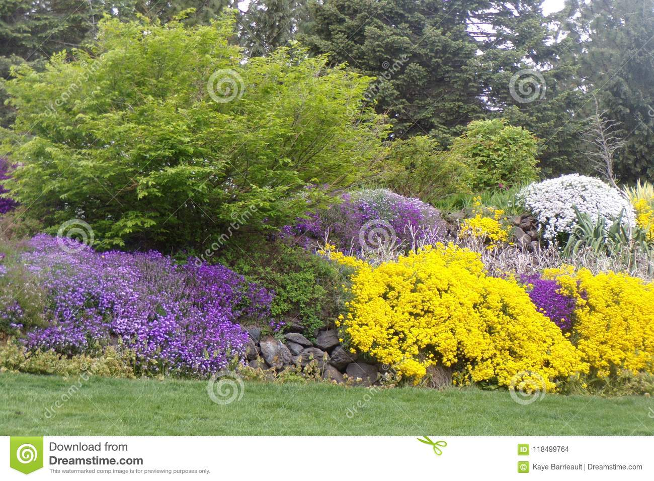 Lush Landscaping With Purple Yellow And White Flowers Stock Photo