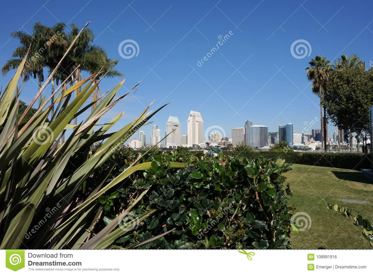 A Lush Park With Lawn And Palm Trees From Coronado Island At The Landing  With The San Diego Skyline In The Background.