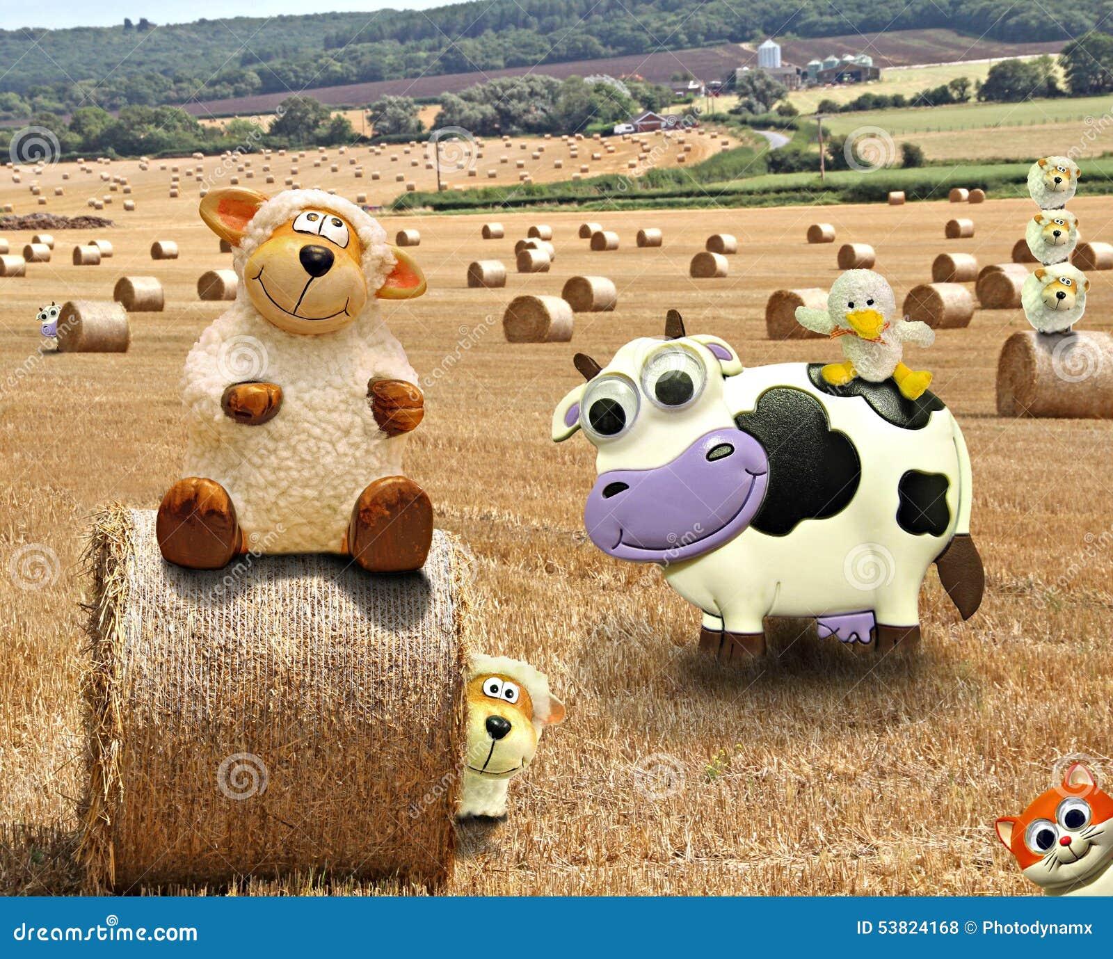 lustiger bauernhof stockfoto bild von emballieren land