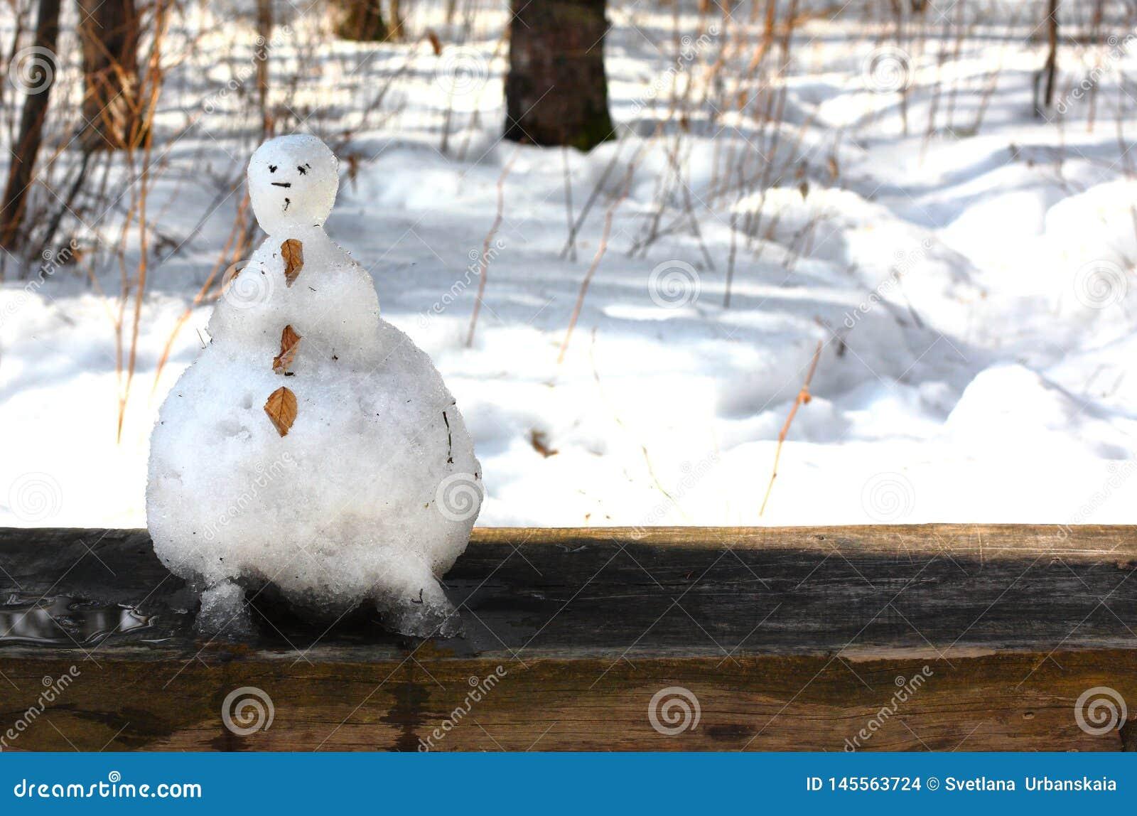 Lustiger Schneemann geschmolzen im Wald auf einer Bank