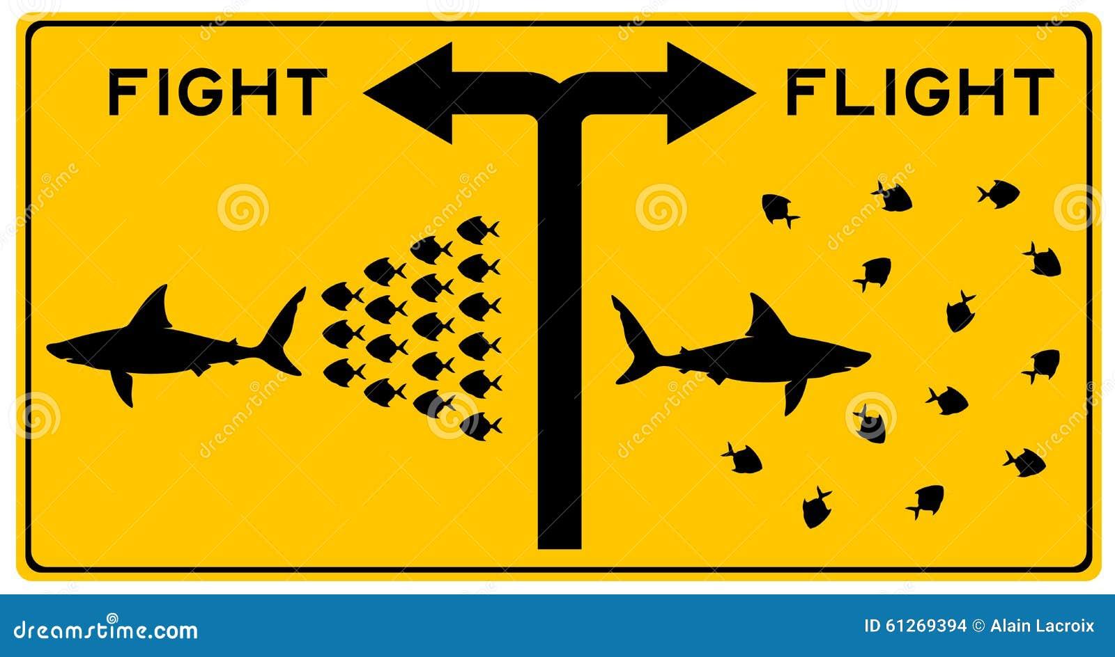 Luta ou voo