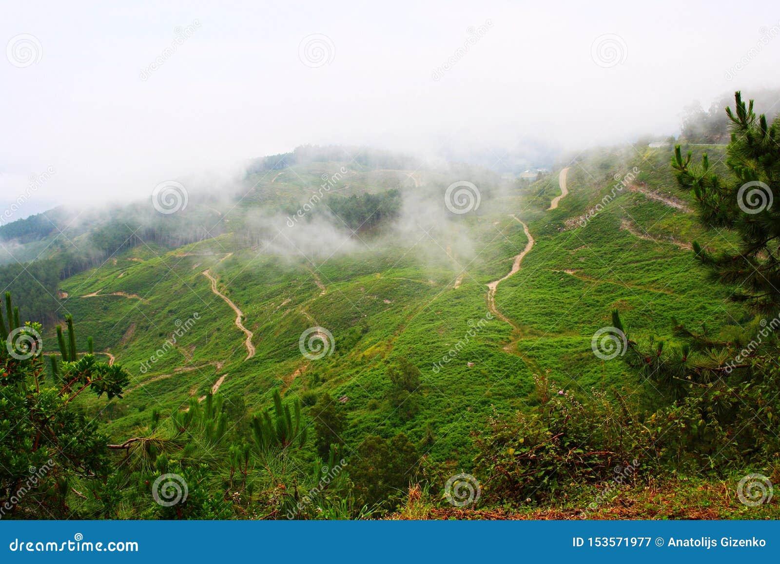Lutningarna av bergen som täckas med frodig grönska och låga moln, trycker på jordningen