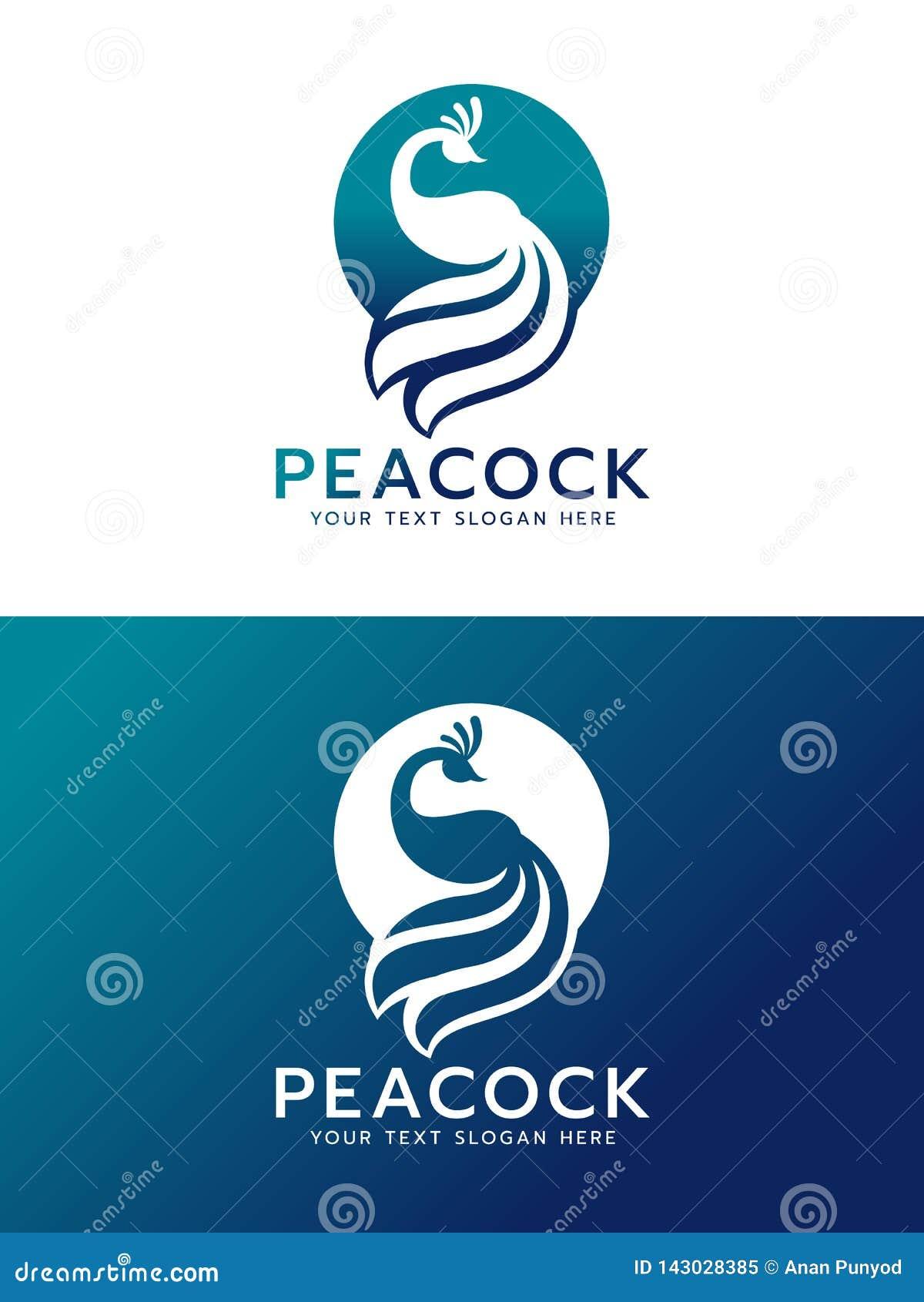Luxe overzeese blauwe en witte Pauw in het teken vectorontwerp van het cirkelembleem