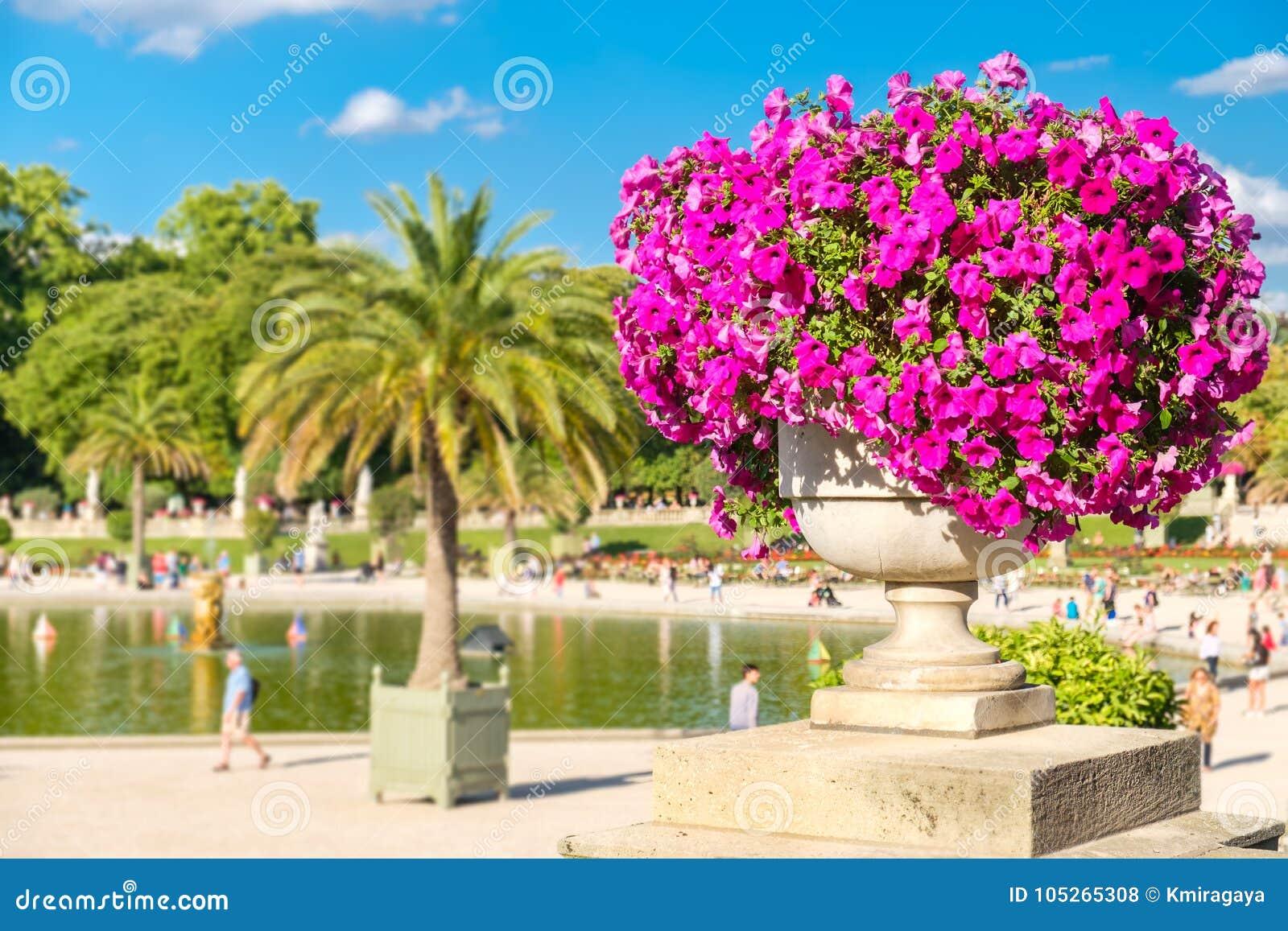 The Luxembourg Garden in Paris