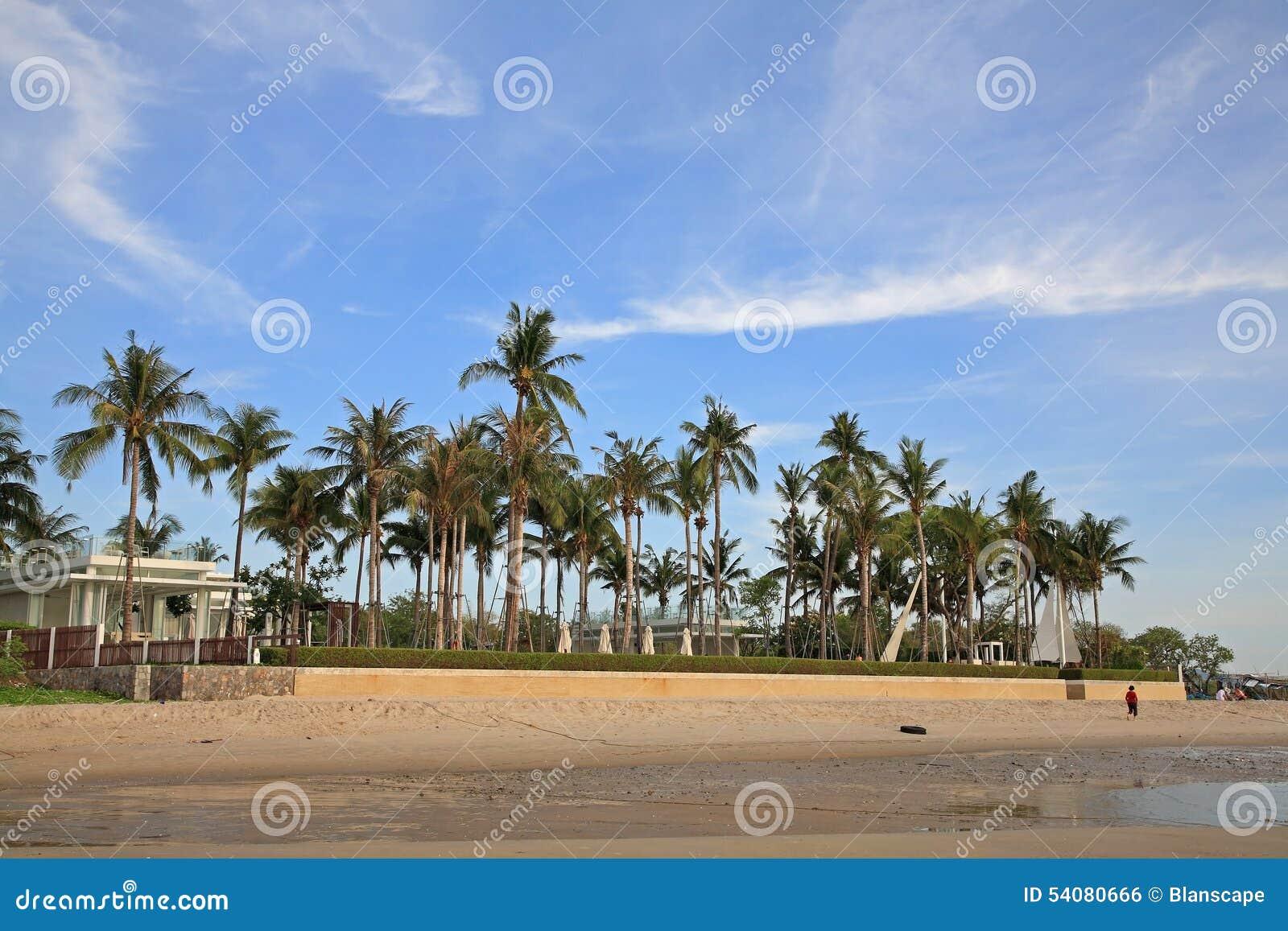 Luxetoevlucht met kokospalm