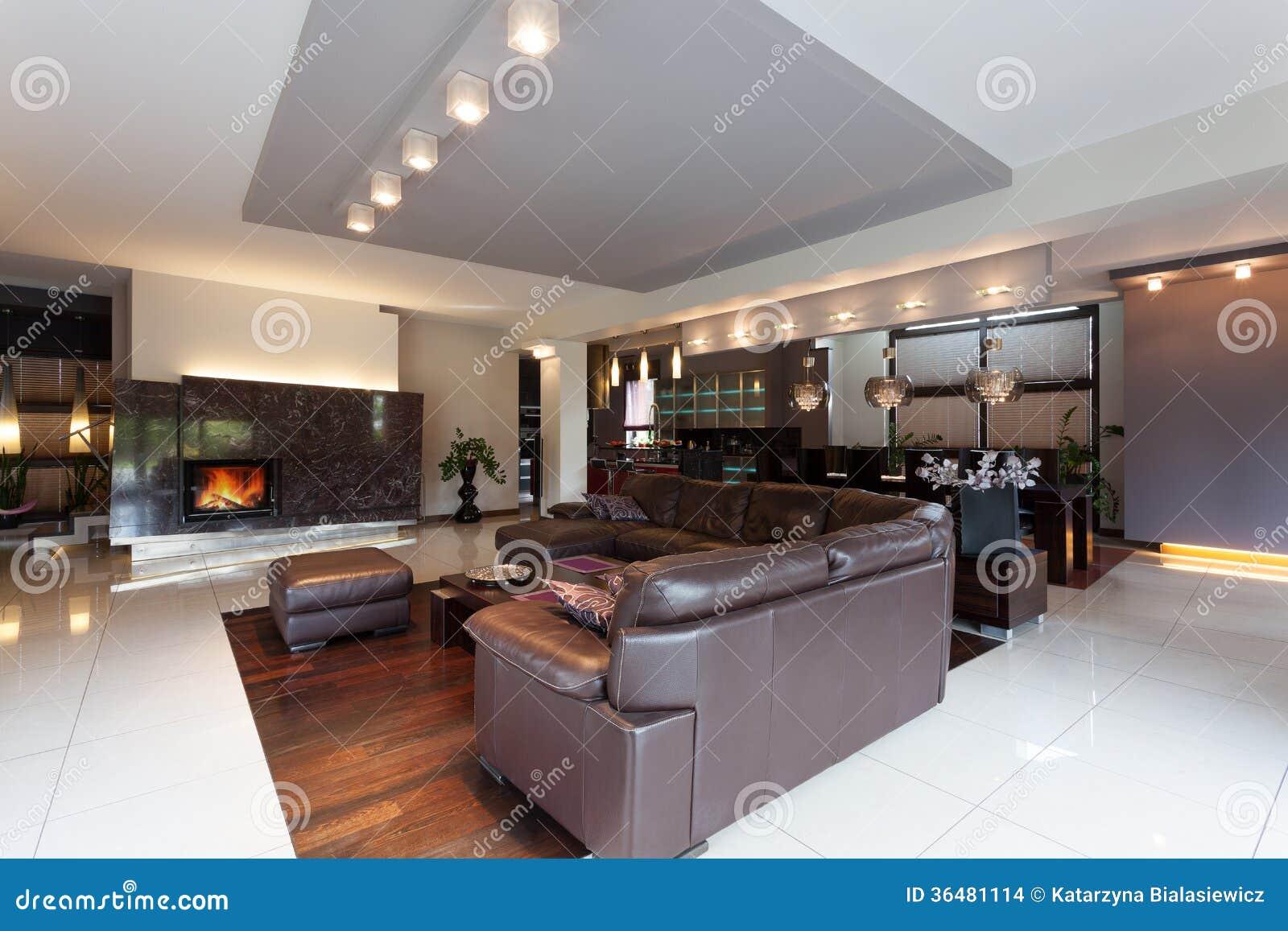 Luxuriöse Wohnung stockfoto. Bild von leder, haupt, dekoration ...