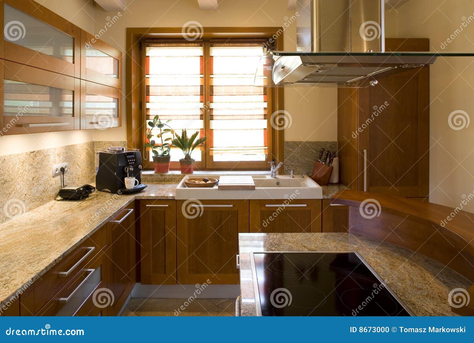 luxurious modern kitchen stock photo image 8673000