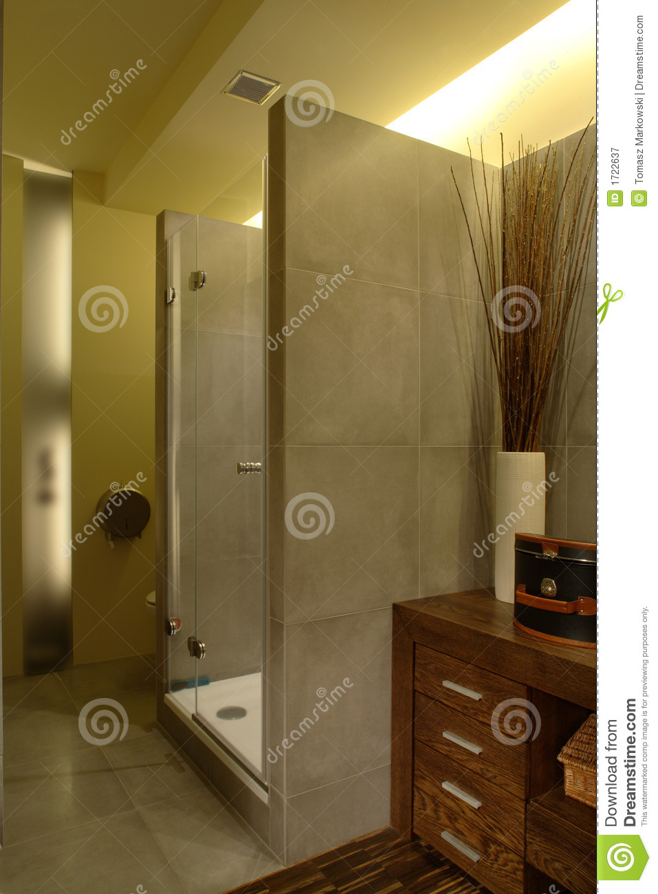 Luxury Apartment Bathroom Shower Royalty Free Stock Photography - Luxury apartments bathrooms