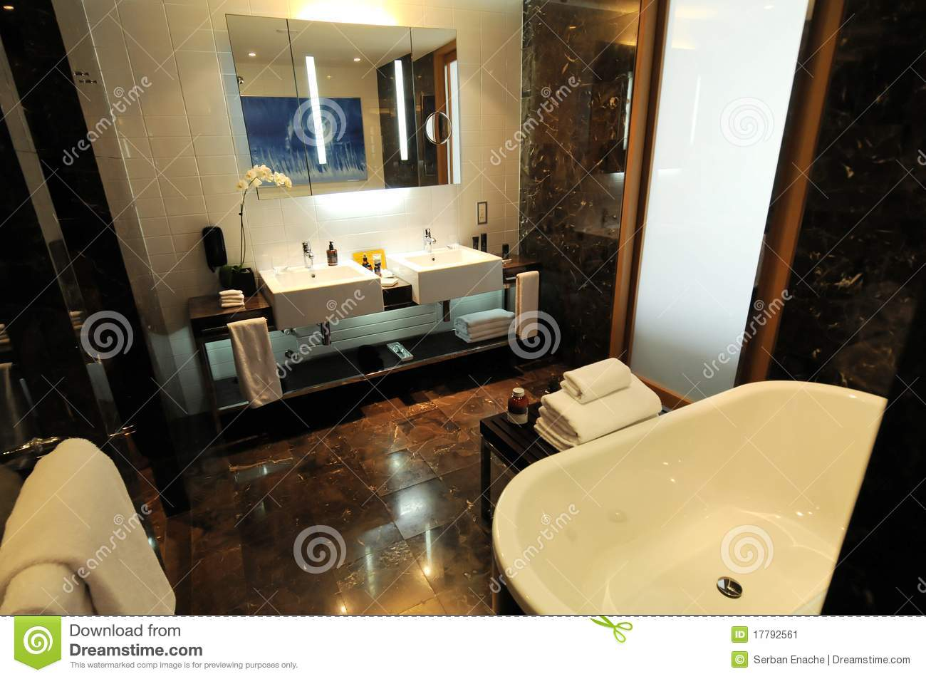 Luxury Bathroom Stock Image Image 17792561