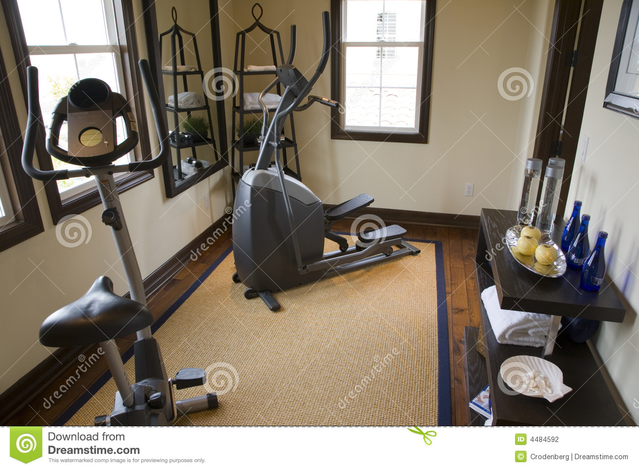 Luxury home gym stock photo image of facility muscular for Luxury home gym