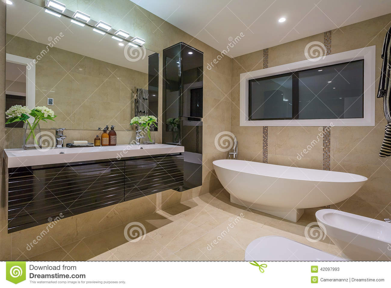 Luxury home washroom stock photo image 42097993 for Beautiful washrooms