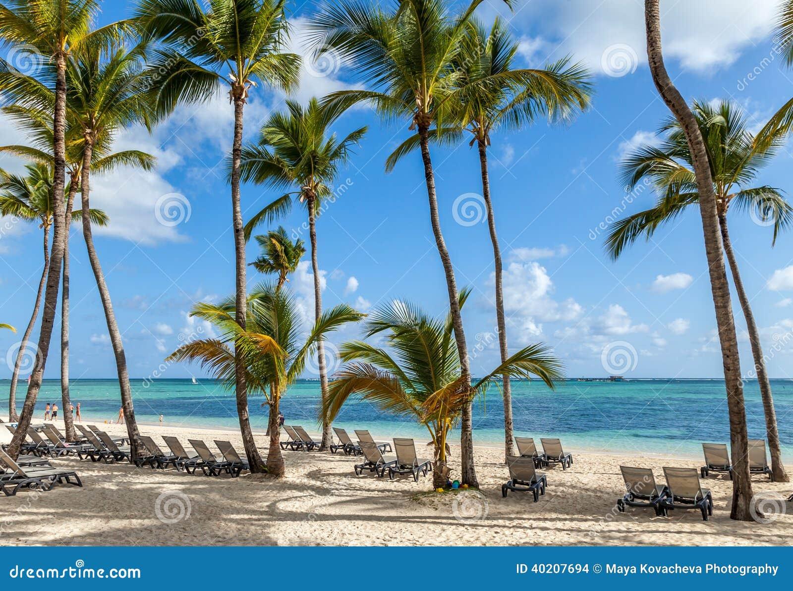luxury resort beach in punta cana stock photo image. Black Bedroom Furniture Sets. Home Design Ideas
