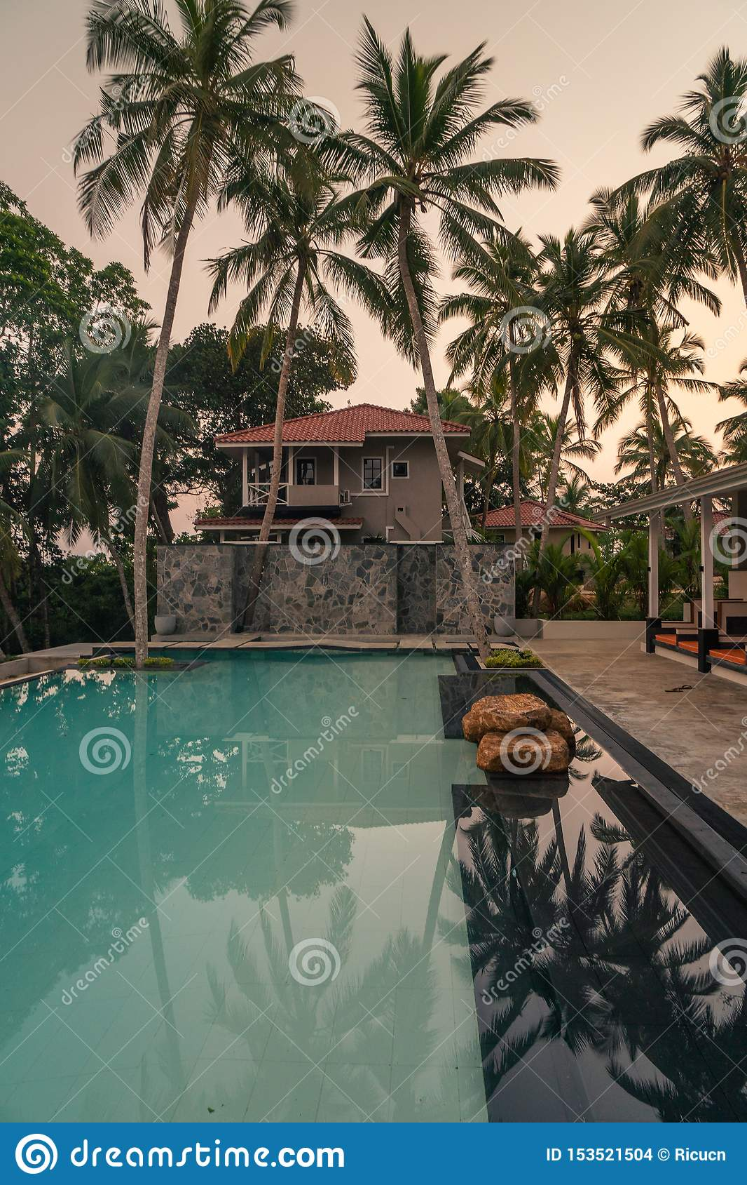 Luxury Resort With Swimming Pool And Tropical Landscape Palm
