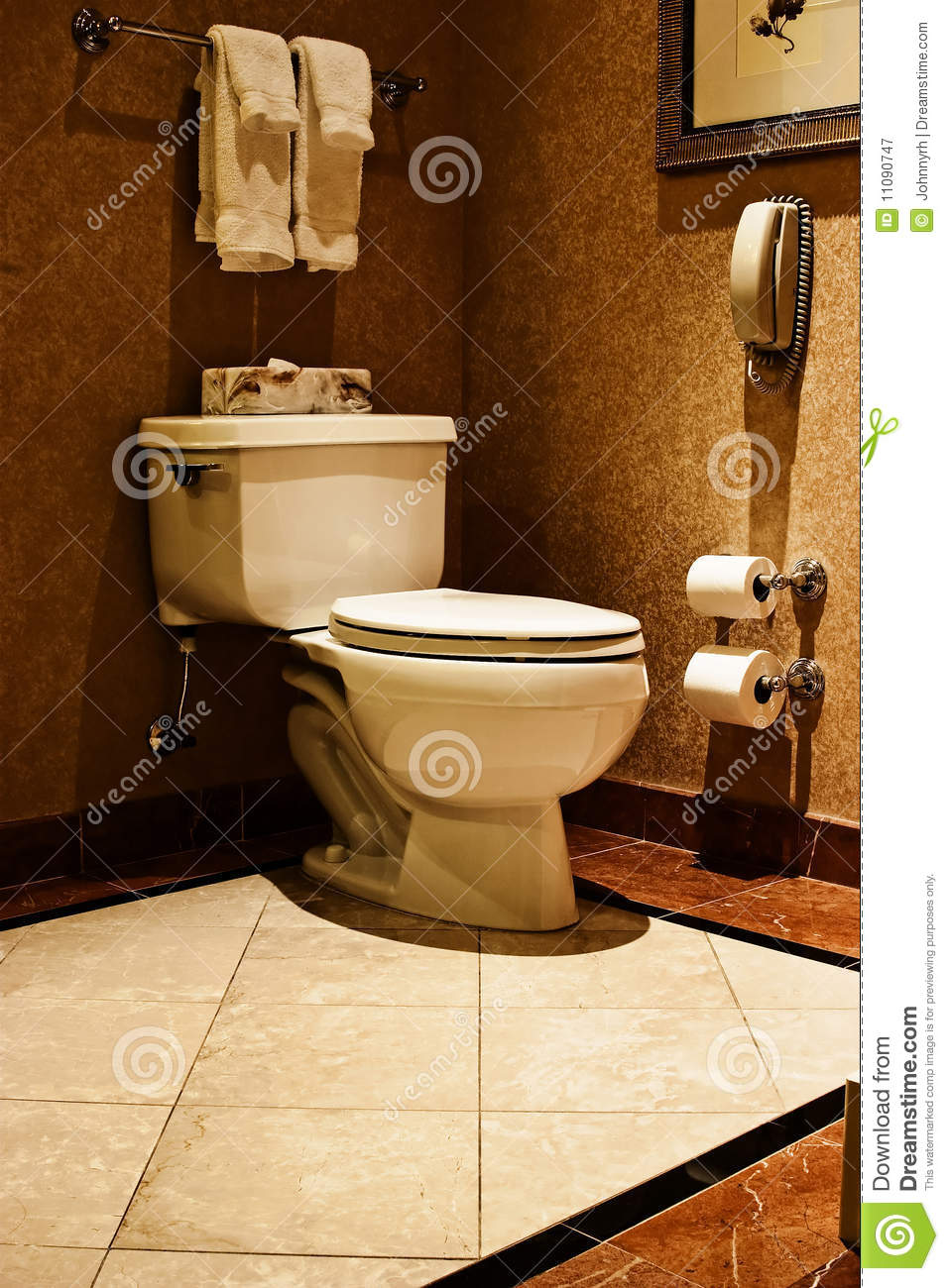 Luxury Toilet Stock Image Image Of Marble Hygiene Paper
