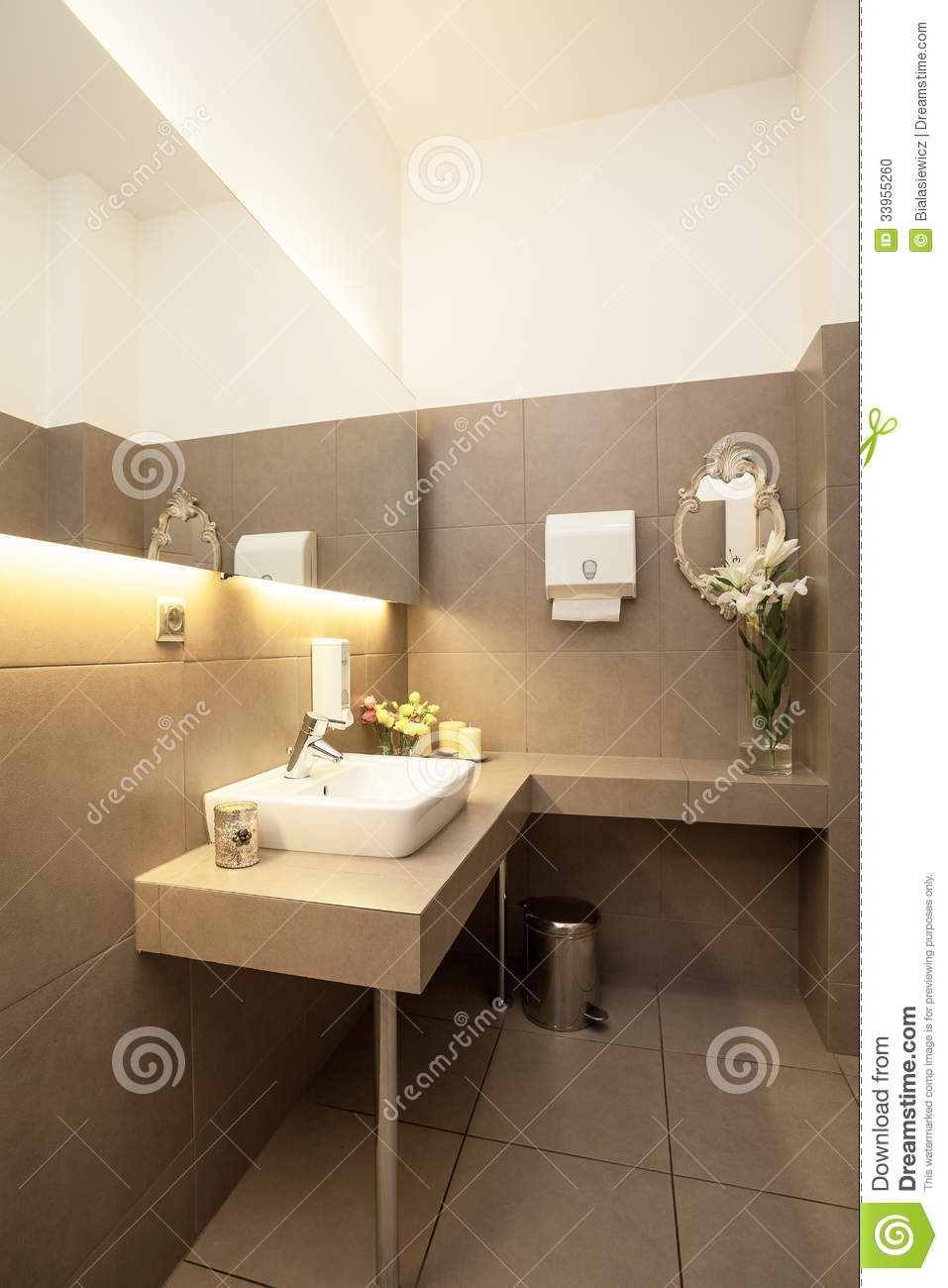 Luxury toilet interior