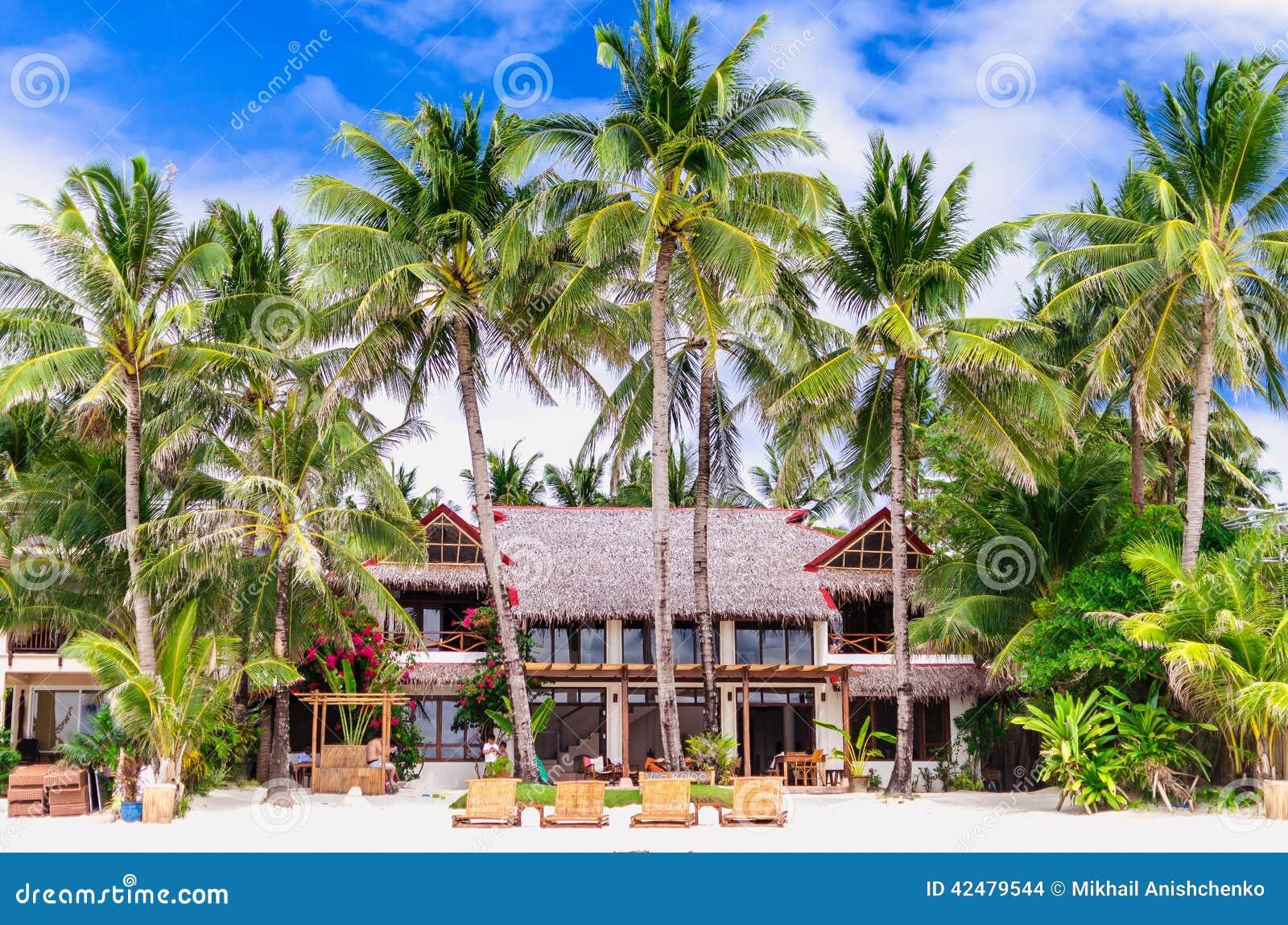 Luxury villa and palm trees at beautiful white sandy beach