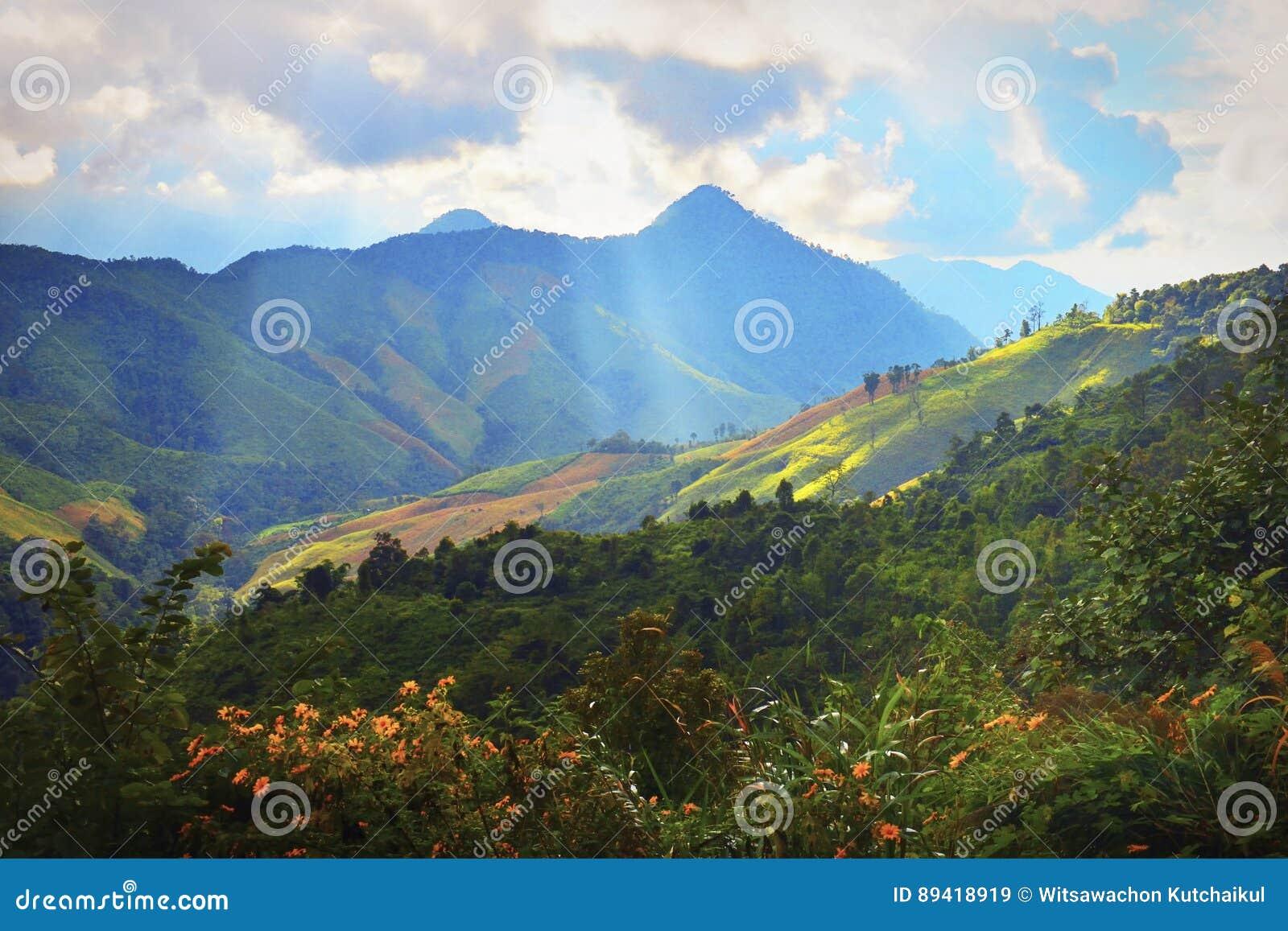 Luz do curso com montanhas