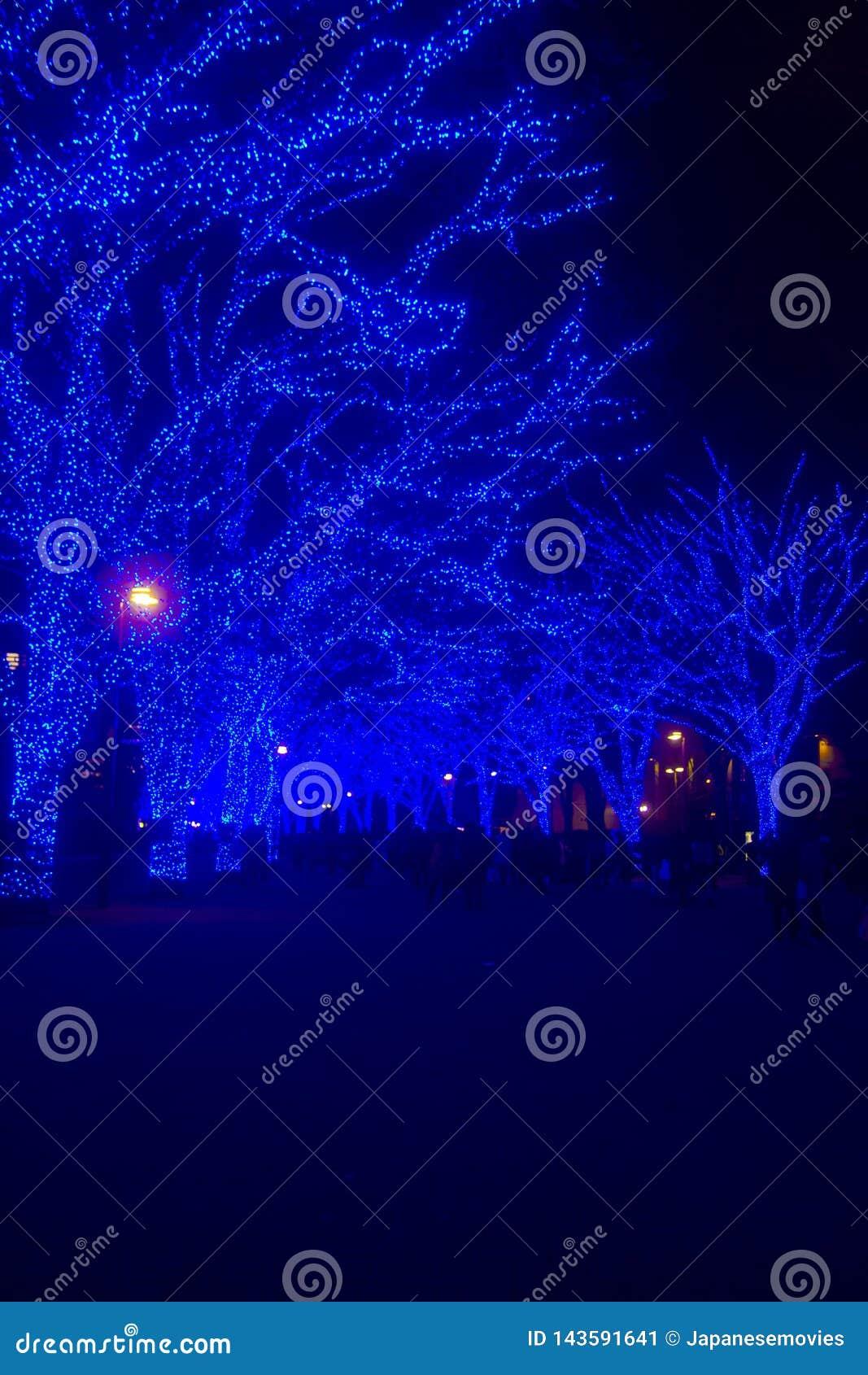 Luz iluminada en la calle en Omotesando Tokio