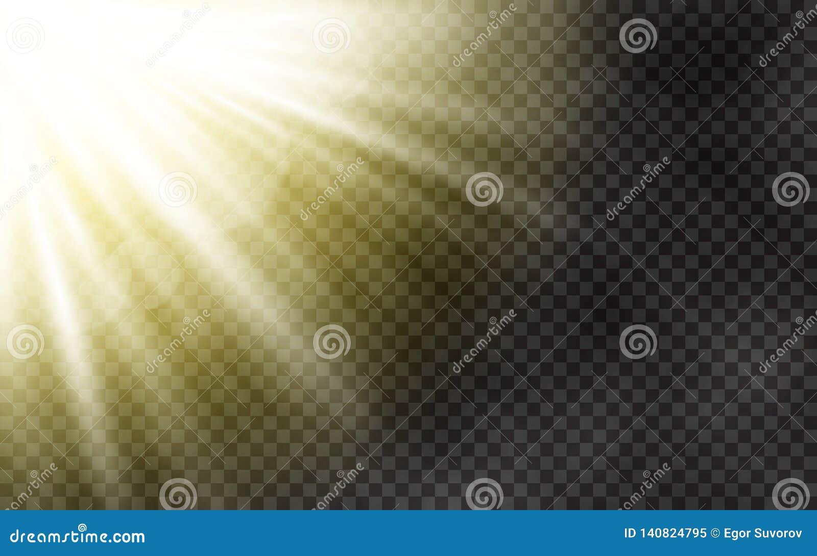 Luz solar com névoa da manhã no fundo transparente Molde da mola com raios amarelos Sun e a lente alargam-se efeito da luz