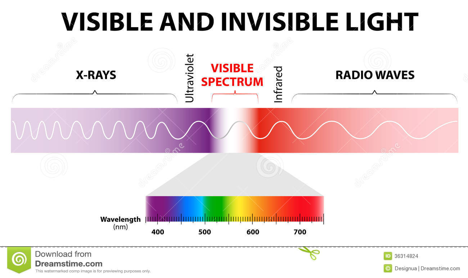 Luz Visible E Invisible Imagenes De Archivo Imagen 36314824