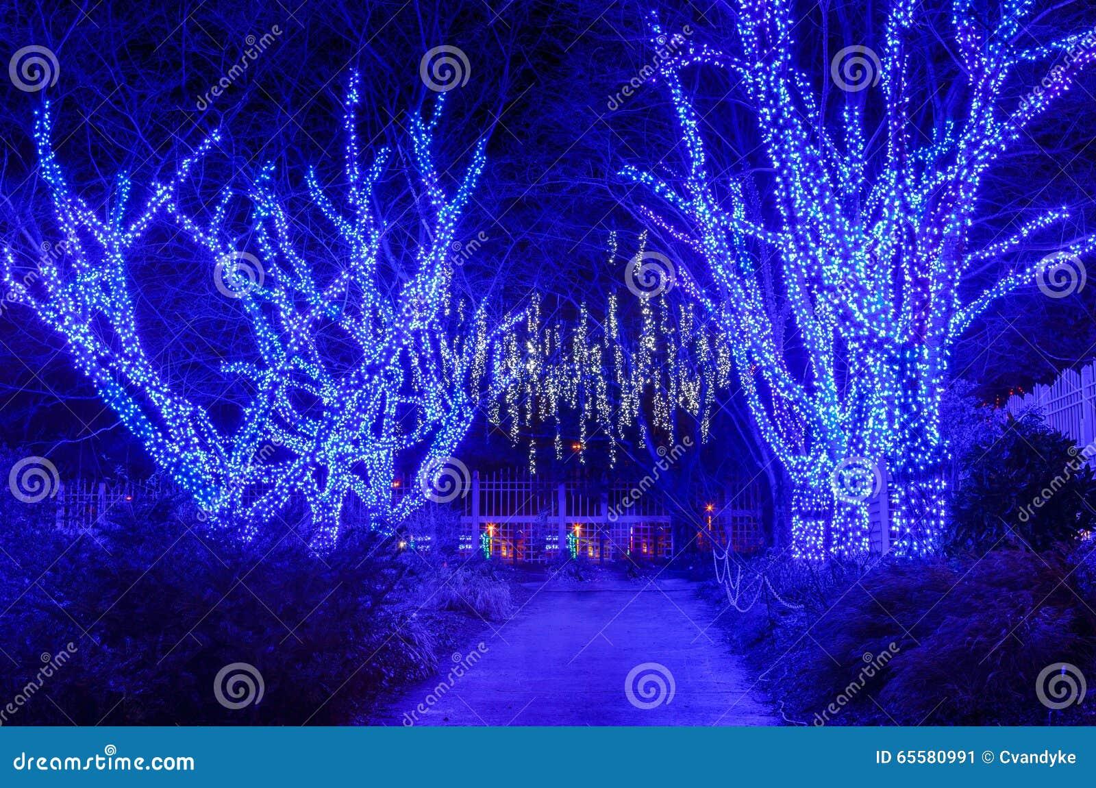 Luzes exteriores do feriado das árvores