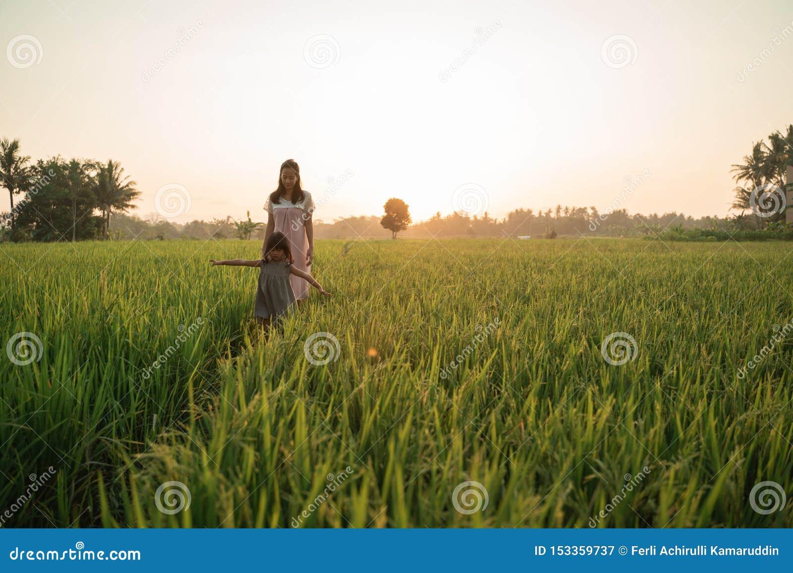 Lycklig asiatisk moder och unge som går i risfält