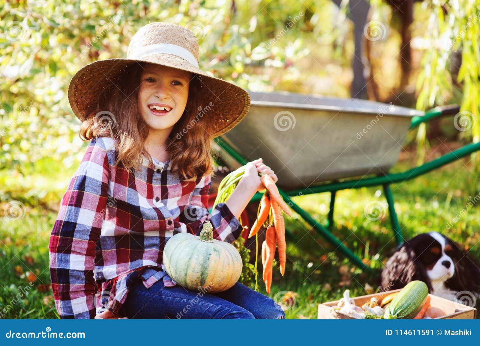 Lycklig barnflicka med spanielhunden som spelar den lilla bonden i höstträdgård och väljer grönsakskörden