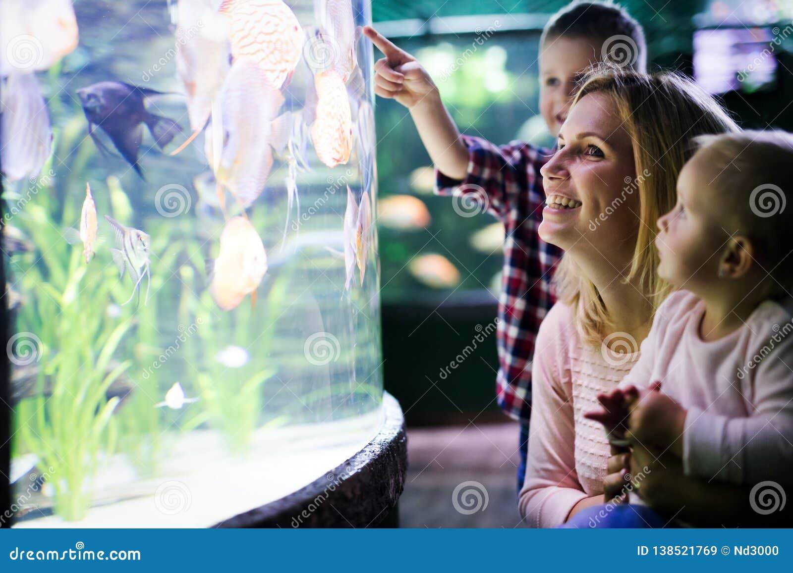 Lycklig familj som ser fiskbehållaren på akvariet