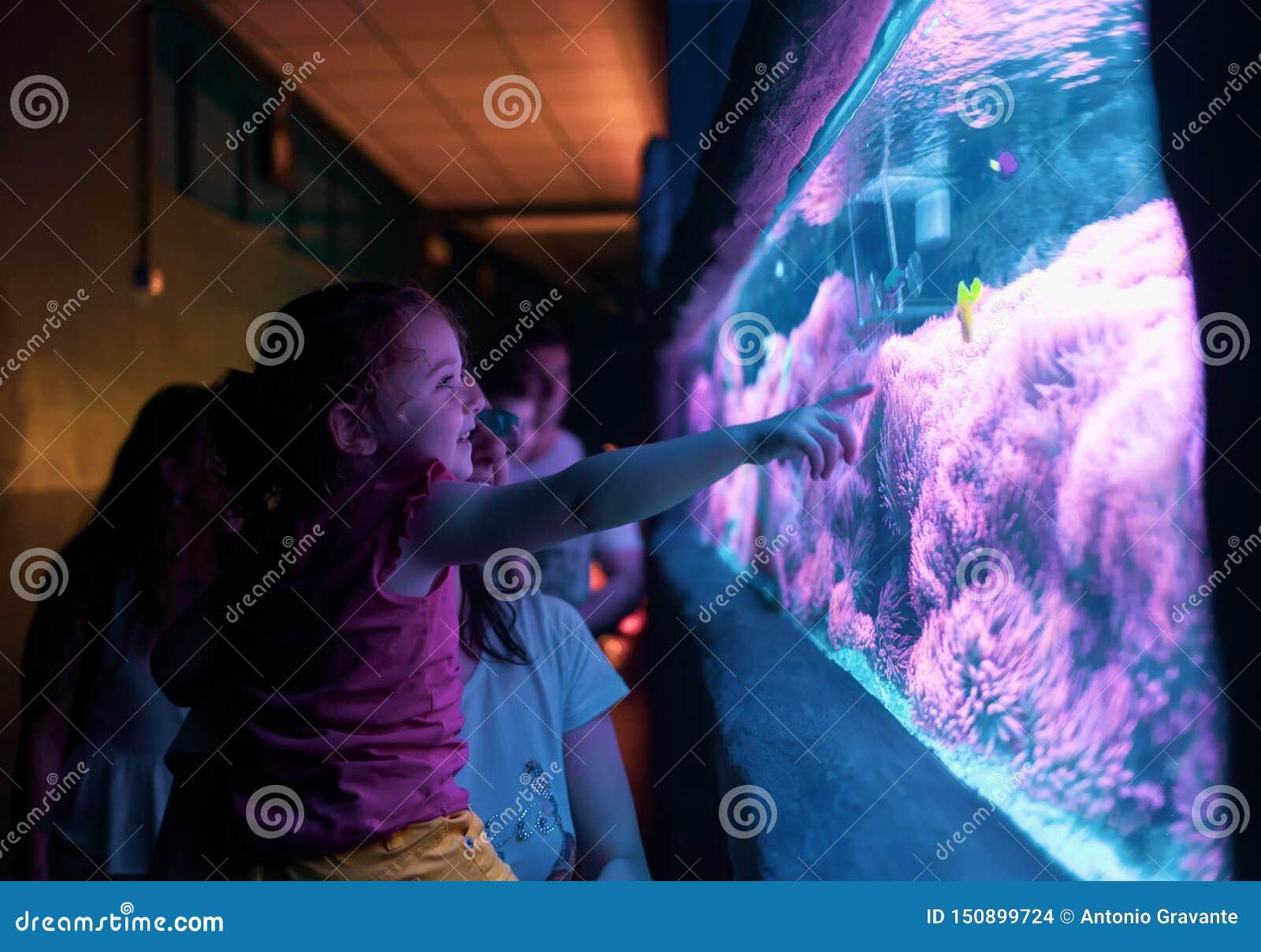 Lycklig familj som ser fisken