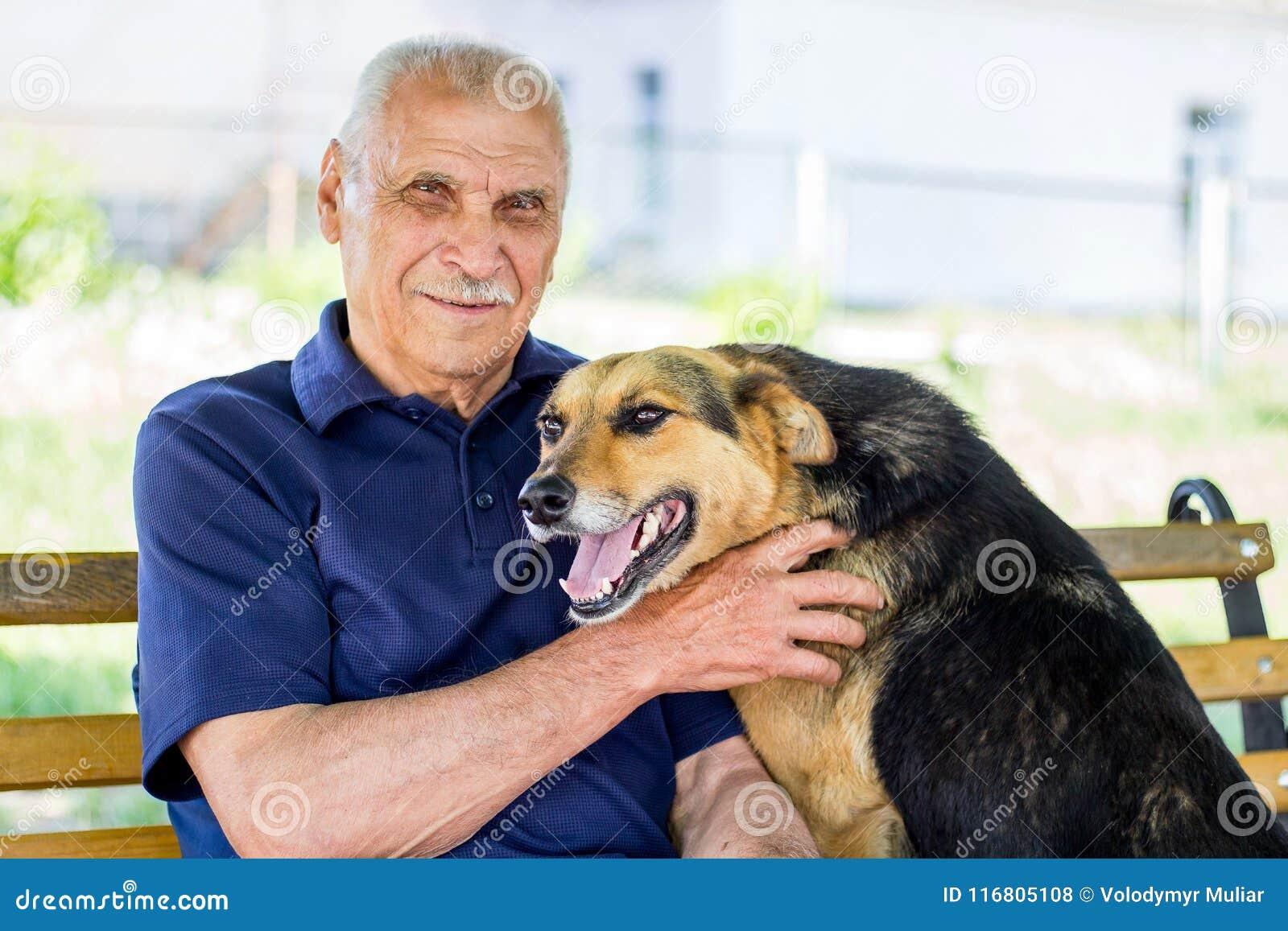 Lycklig hund pressande mot hans förlage Hundshower hans förälskelse för ägare, medan vila in parkera