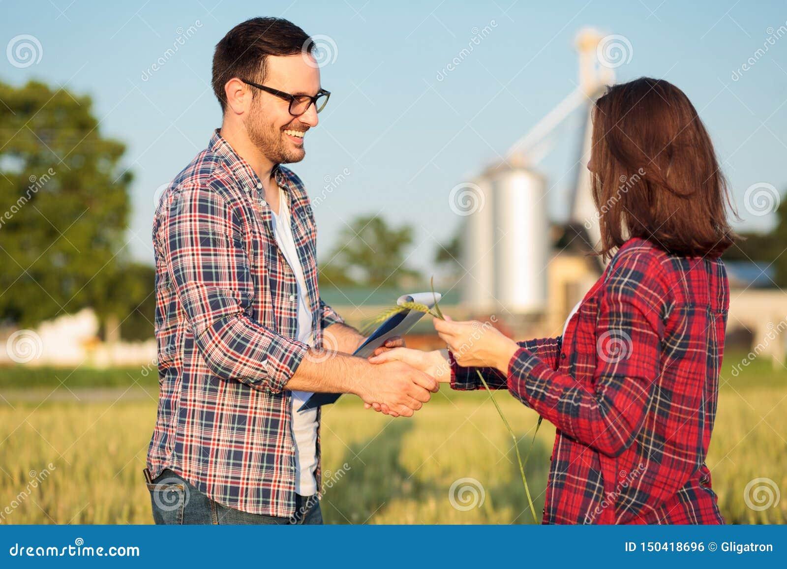 Lycklig ung kvinnlig två och manliga bönder eller agronomer som skakar händer i ett vetefält