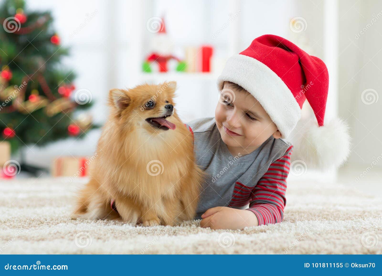 Lycklig ungepys och hund som deras gåva på jul Inre jul