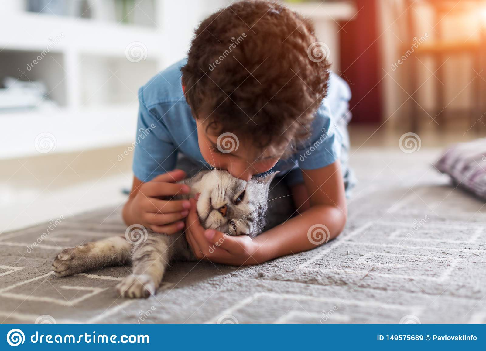 Lyckligt litet barn som hemma spelar med grå brittisk shorthair på matta