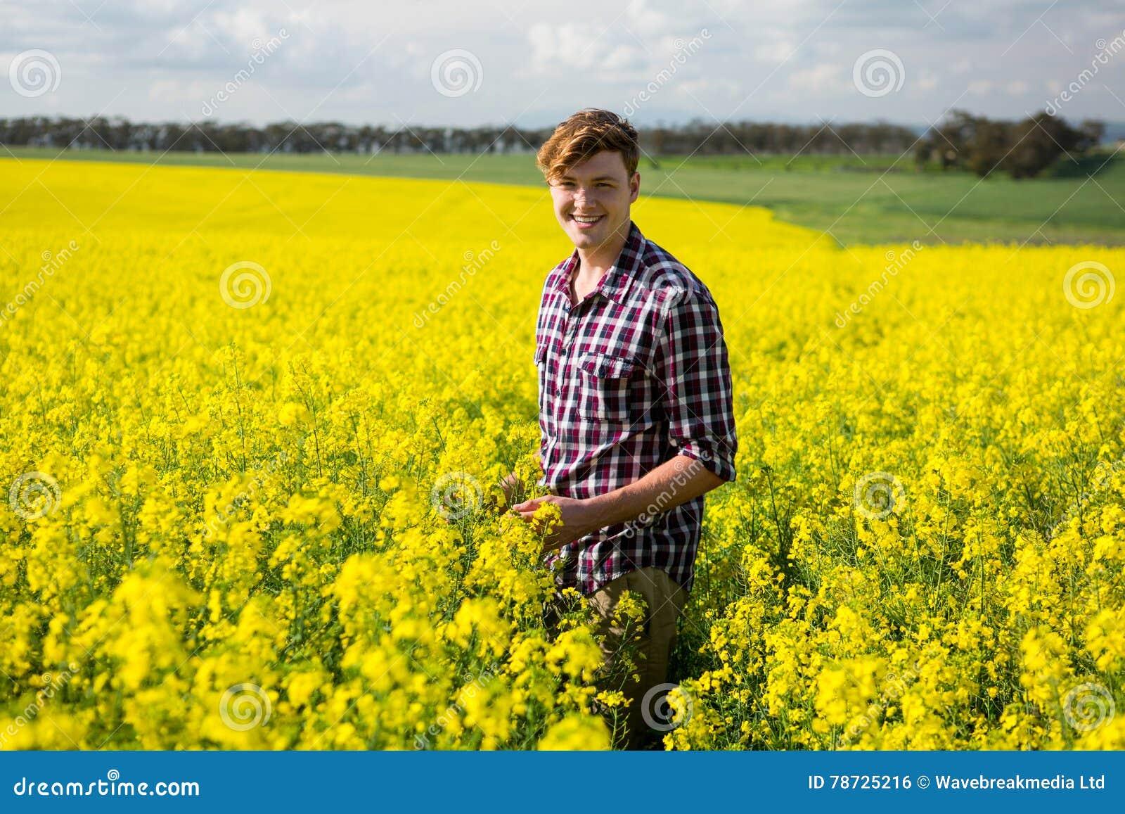 Lyckligt mananseende i senapsgult fält