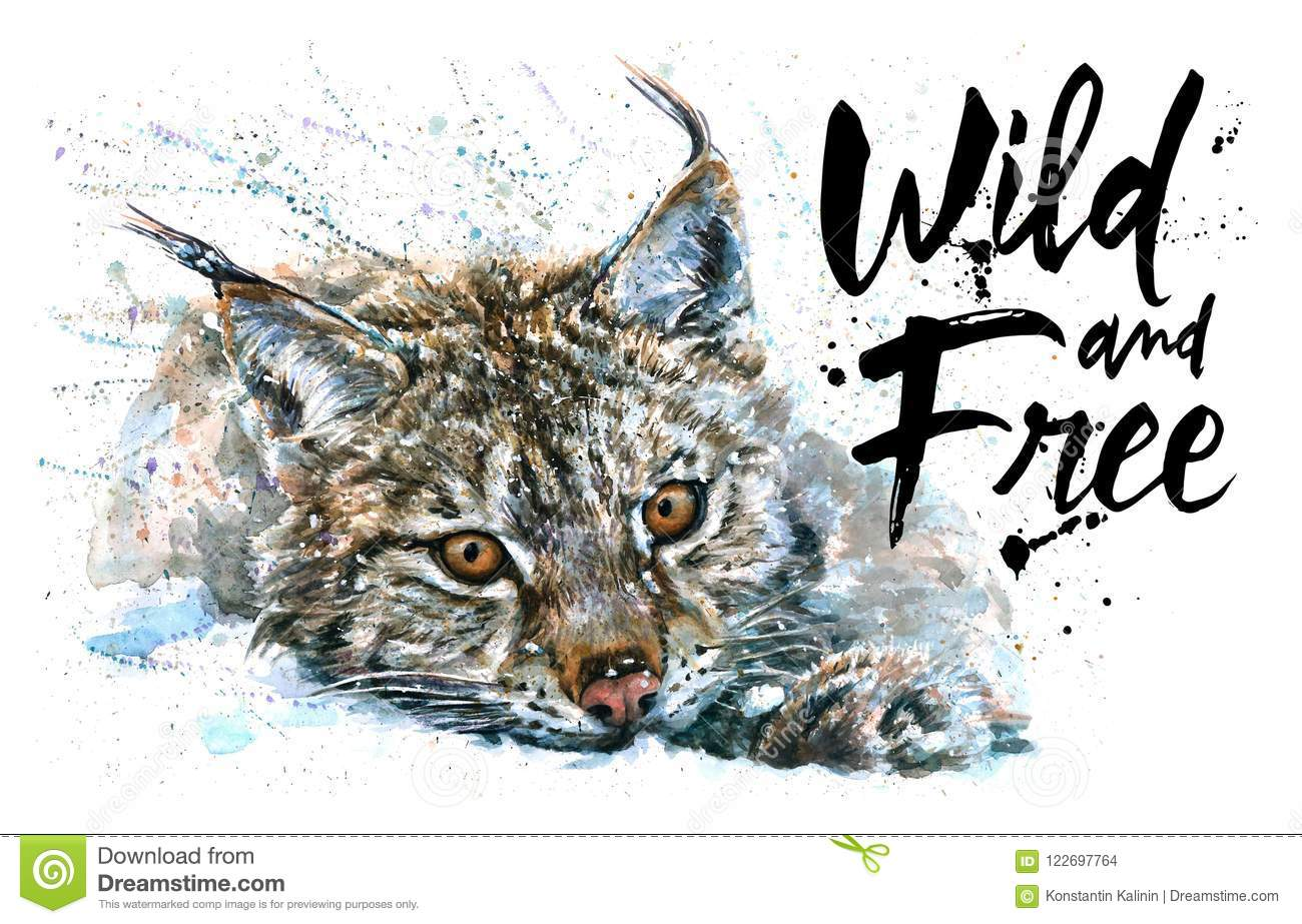 Lynx Wild And Free Watercolor Painting Animals Predator Design Of