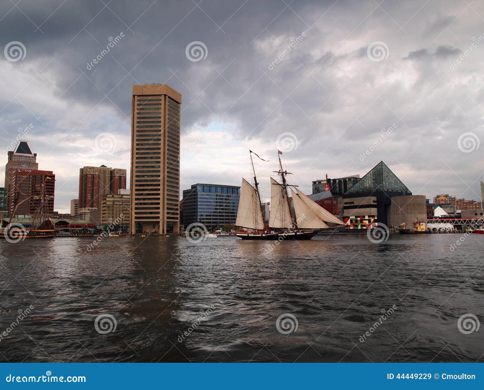 Lynxzeilen in de Binnenhaven van Baltimore